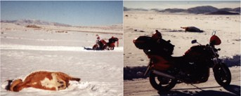 Hawke 2001 bandit 1200 Feb2002 Nevada Utah Idaho Salt Flats