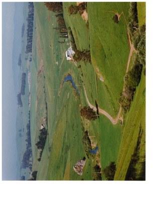 bodega bay green hills may 1995